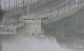 日本:千吨油轮撞上大桥 机场跑道被淹