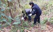 少妇失踪案:警察在深山发现七包尸块