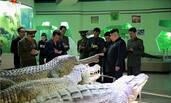 金正恩视察即将完工的朝鲜自然博物馆