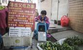 9岁女孩卖菜寻亲 父母汶川地震后失联