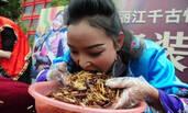 丽江吃昆虫大赛 冠军5分钟吃2斤