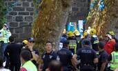旅游胜地大树倒塌 砸死11人