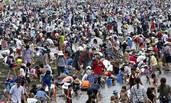 日本民众海边捡贝壳 每人能带走2公斤