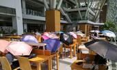 深圳图书馆一幕