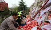 十吨苹果散落高速 40多人合力捡拾