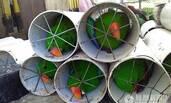 鹦鹉走私者将125只珍贵鸟类塞入水管
