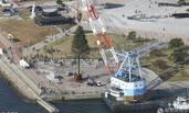 世界最大圣诞树现身日本神户