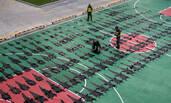 查获的215张鳄鱼皮铺满了篮球场