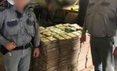 捐给监狱的香蕉里藏1800万美元毒品