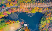 初冬的南京钟山好似打翻了调色盘
