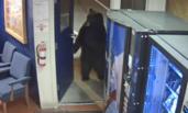 美国:熊开门进警局溜达 吓坏警察