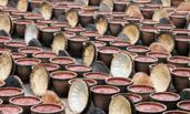 重庆:5000个大酱缸酿造火锅底料
