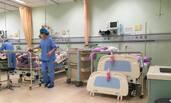 郭德纲徒弟张云雷跳桥自杀 目前仍在重症加护病房