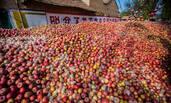 陕西:苹果价格下滑之后