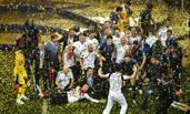 球迷冲入场内与法国队共同庆祝 被带走