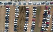村民改麦田为临时停车场 一天收入2000元