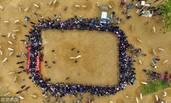 山东聊城:乡村趣味抵羊赛吸引千人围观