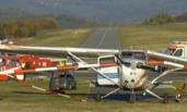 德飞机降落时冲撞人群 致3死5伤