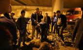 200斤野猪闯进政府大院