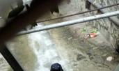 警察逆流爬行救人 画面刷爆朋友圈