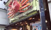 李小璐母女日本街头拍照 甜馨越来越美啦!