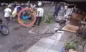 印度电视女主持遇横祸 遭大树击倒身亡