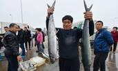 山东10万斤海鲜上岸 男子单手提大鱼