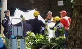 葡萄牙200年古树倒下 13人被压身亡