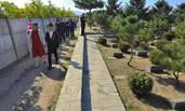 新人在墓地举办婚礼
