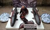 """印度:女子""""躺尸""""街头 抗议捕杀鱼类"""