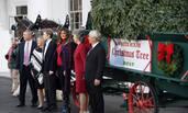 梅拉尼娅与儿子迎接白宫圣诞树