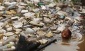 湄公河垃圾惊人 儿童污水中游泳