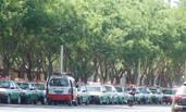 新疆:出租车司机罢工现场