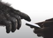 ?前线   康宁发布第六代大猩猩玻璃:1米距离可跌落15次不碎屏