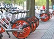 李克强论虚实经济:总不能在网上骑自行车吧?