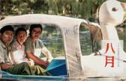 《八月》日前首映,80后导演张大磊等亮相。作为去年金马奖最佳影片,这部小成本电影得到非同一般的关注。