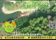 视频|凤凰京东公益助农 南丰蜜橘酸甜好滋味
