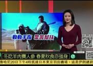 视频|凤凰京东公益助农 高原美味刚察藏羊