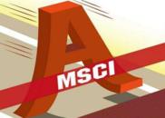 解码MSCI成分股:创业板暂无缘 新经济望纳入