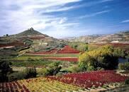从里奥哈开启西班牙迷人佳酿