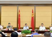 张庆伟:全面扎实推动乡村振兴战略实施