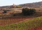 西班牙爱维华酒庄:坐落圣地亚哥朝圣之路的佳酿