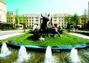 青岛国际院士港:打造世界顶尖人才的创业热土