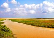 黄河回到大海的眼眶