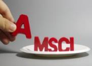 如果通不过这个测评 纳入MSCI名单还会被剔除