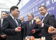 """波兰总统当""""推销员"""" 习近平品尝波兰苹果:不错"""