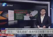 """四川:敬礼娃娃""""长大""""汶川地震已然十年"""