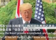 """特朗普又变脸!现在又说""""英国怎么脱欧都OK"""""""