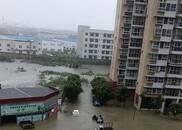多处房屋被淹道路冲毁