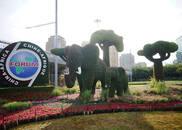 非洲各界热切期待中非合作论坛北京峰会